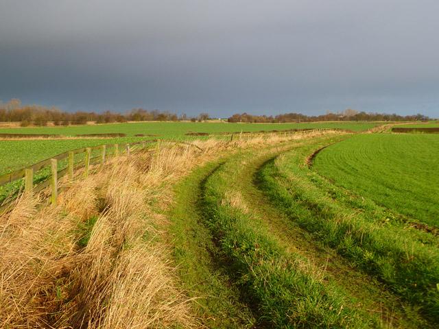Farmland and track, Cleasby
