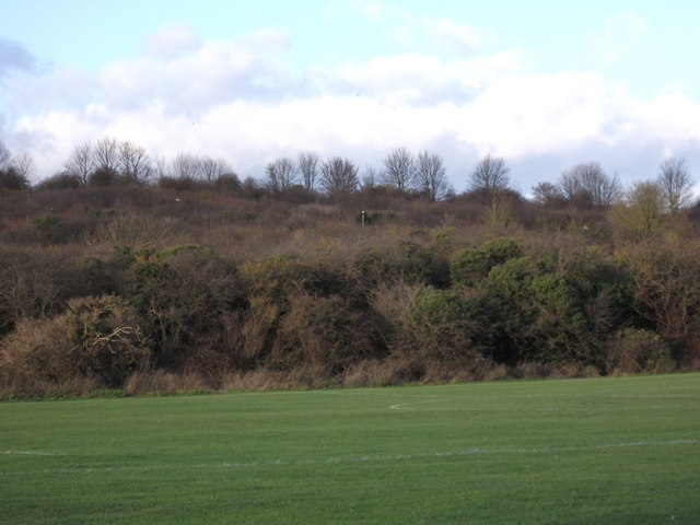 The Coney Banks from Barnfield Avenue, Chatham