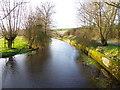 SU0425 : River Ebble, Broad Chalke - 9 by Maigheach-gheal
