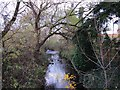 SO8376 : River Stour seen from New Road, Kidderminster by P L Chadwick