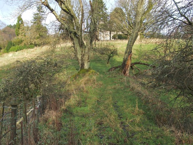 Former road to Overtoun House