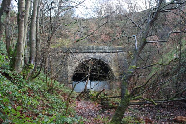Western Portal of Pudsey Greenside tunnel