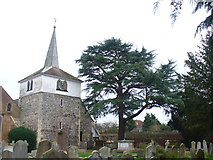 TQ1667 : St Nicholas, Thames Ditton by Colin Smith