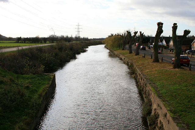 Pollarded willows along the Beeston Canal