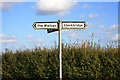 SU3337 : Signpost on Danebury Down by David Lally