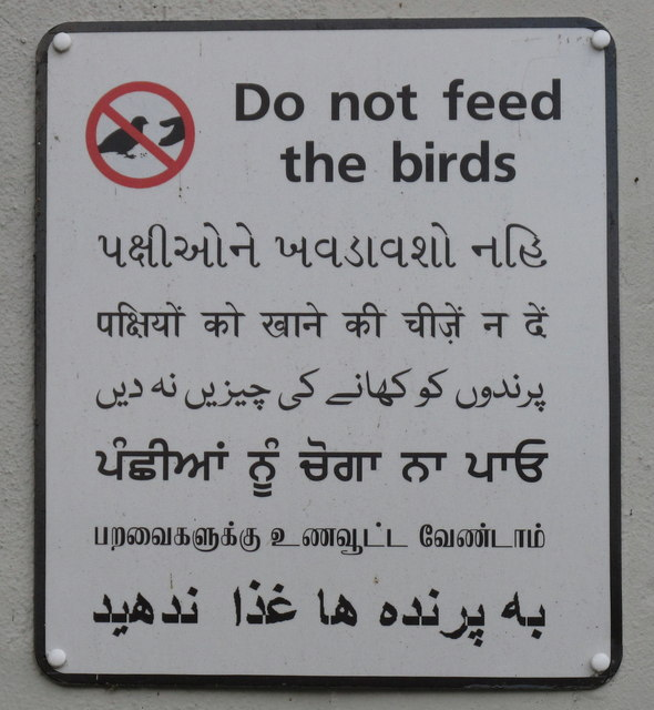 "Multilingual ""Do not feed the birds"" sign on canal bridge"
