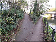 TQ1983 : Access to Abbey Road from towpath by David Hawgood