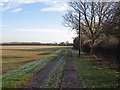 TQ8497 : Track to Rectory Road by Roger Jones