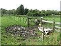 NO8796 : A bath in a field by Richard Webb