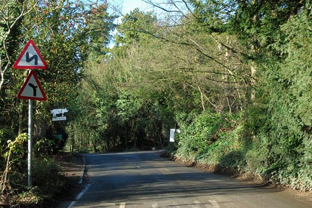 Pilgrims' Way nearing Rowdow Lane