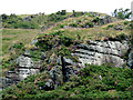 SN7067 : Rocky outcrop north-west of Ystradmeurig, Ceredigion by Roger  Kidd