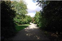 TM1645 : Path, Christchurch Park by N Chadwick
