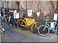 TL4458 : Cambridge bikes by Oliver Dixon
