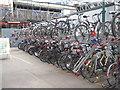 NT2573 : Cycle storage at Waverley Station by M J Richardson