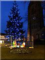 SD8510 : Christmas Tree and Nativity, Heywood by David Dixon