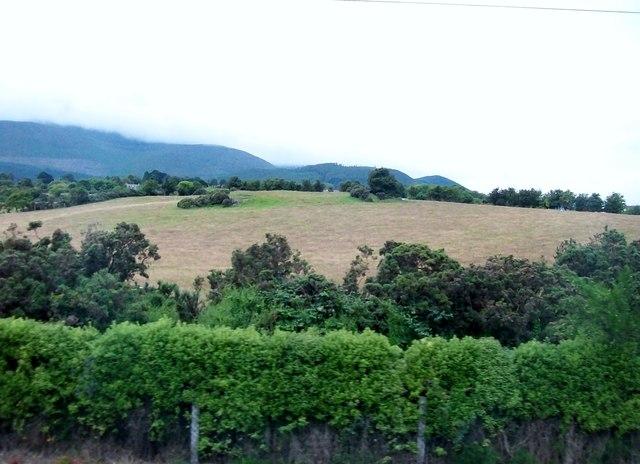 Farmland on the urban fringe of Newcastle