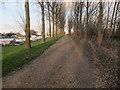 TF5800 : Permissive bridleway by Hugh Venables