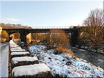 SD7915 : River Irwell, Brooksbottoms Viaduct by David Dixon