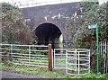 ST5670 : Railway bridge in South Liberty Lane by Neil Owen