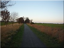 SE6045 : York to Selby cycle path near Naburn by DS Pugh
