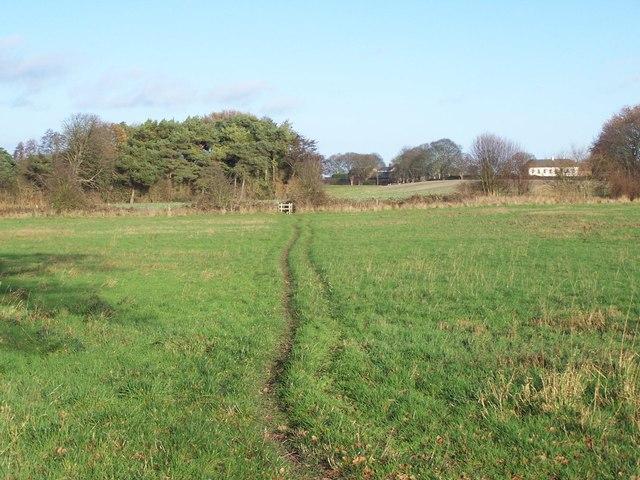 Footpath Near Footherley