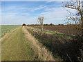 TL3972 : Bridleway to West Fen Road by Hugh Venables