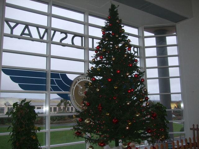 Christmas Tree Ireland