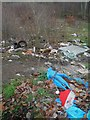 SE4007 : I'd like to teach the world not to drop their rubbish here! by Steve  Fareham