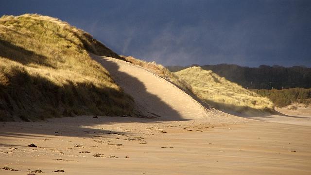 Dune formation, Ravensheugh Sands by Richard Webb
