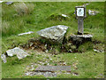 SN7765 : Hydrant post in Cwm Egnant, Ceredigion by Roger  Kidd