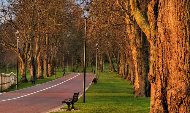 The Wallace Park, Lisburn (7)