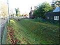 TQ2376 : Bishops Park, Fulham by Alexander P Kapp