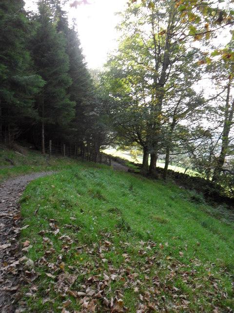 Footpath north-east of Ambleside