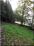 NY3805 : Footpath north-east of Ambleside by Samantha Waddington