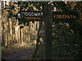 SP8505 : T junction of paths on the Ridgeway in Goodmerhill Wood by Peter S