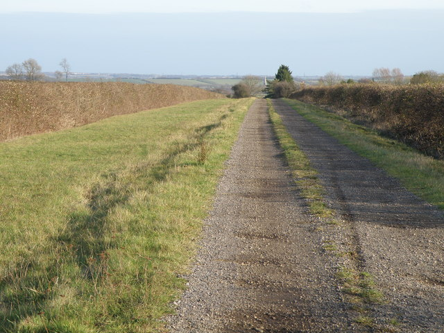 Track to Molly Rose Lodge