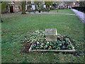 SE6132 : Cholera Burial Ground (1) by Alan Murray-Rust