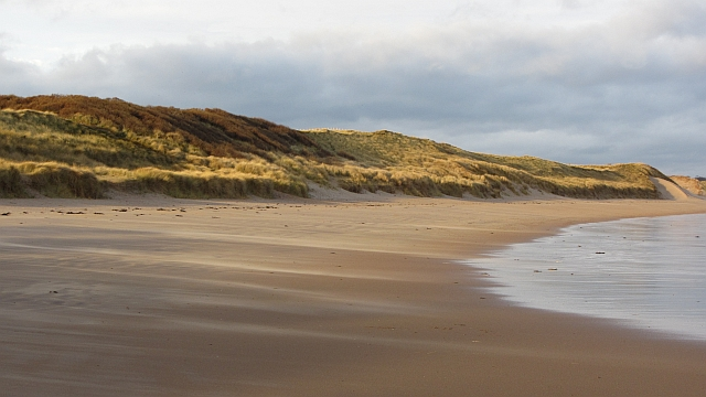 Dunes, Ravensheugh Sands by Richard Webb