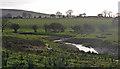 TQ2213 : Farmland near Small Dole (3) by Stephen Richards