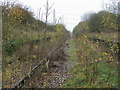 SP7327 : Disused line between the platforms at Verney Junction by Shaun Ferguson