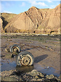 TA1281 : Washed up wheels by Pauline E
