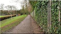 J3773 : Park path, Belfast (4) by Albert Bridge