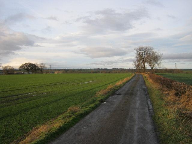 Road to West Newbiggin