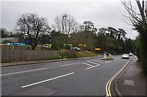 SX9364 : Torquay : Babbacombe Road by Lewis Clarke