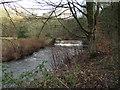 SD7211 : Weir on Eagley Brook by Philip Platt