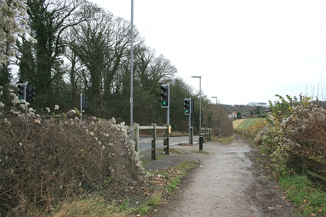 Horse margin and equestrian crossing, Langley Vale Road