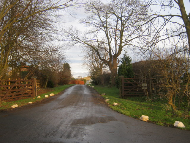 Drive to Larberry Pastures