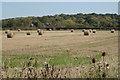 SP1764 : Round straw bales near Cherry Pool Farm by Robin Stott