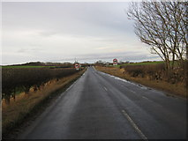 NZ3418 : Roman Road north from Sadberge by peter robinson