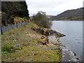 SN9167 : Penygarreg Reservoir, Elan Valley, Mid-Wales by Christine Matthews